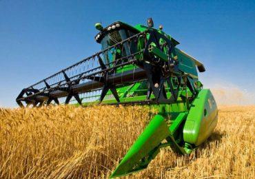 Российская пшеница может стать одним из главных экспортных продуктов