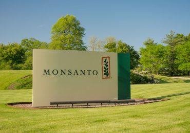 Сфера деятельности американской корпорации Monsanto Company